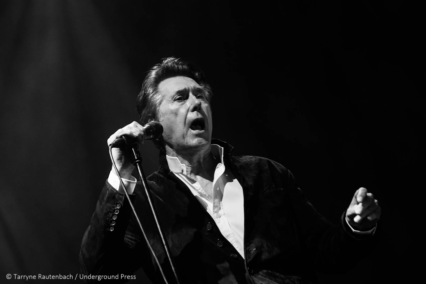 Bryan Ferry JHB 16 Feb 2019 photo by Tarryne Rautenbach 7686