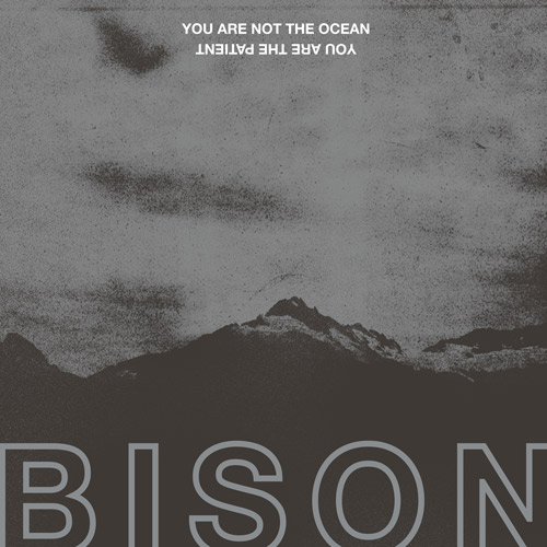 bison cover digital