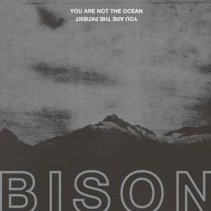 "BISON ""You Are Not The Ocean You Are The Patient"" (2017) Pelagic Records"